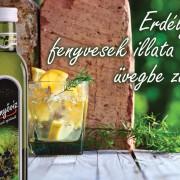 erdélyi fenyvesek itala üvegbe zárva 2