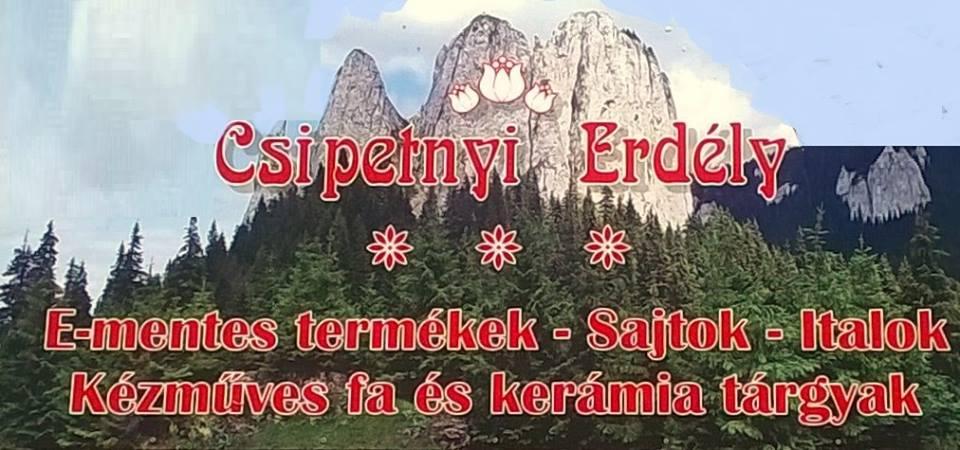 Csipetnyi Erdély, Gárdony Szabadság úti pavilonsor 2369/8/B